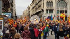 Jaume Vives da un discurso en la plaza Sant Jaume ante 15.000 personas manifestándose por Tabarnia. (Foto y vídeo: Manolo Riera)
