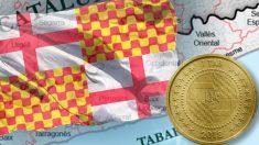 tabarnia coin