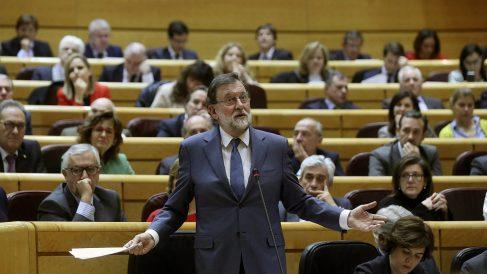 El presidente del Gobierno, Mariano Rajoy, en el Senado. (EFE)