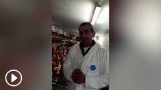 Un ganadero español desmonta los bulos sobre las gallinas enjauladas y las gallinas de suelo.