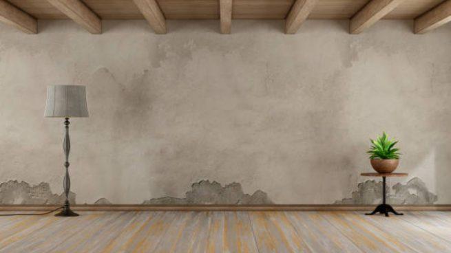 C mo quitar las manchas de humedad - Quitar humedad pared ...