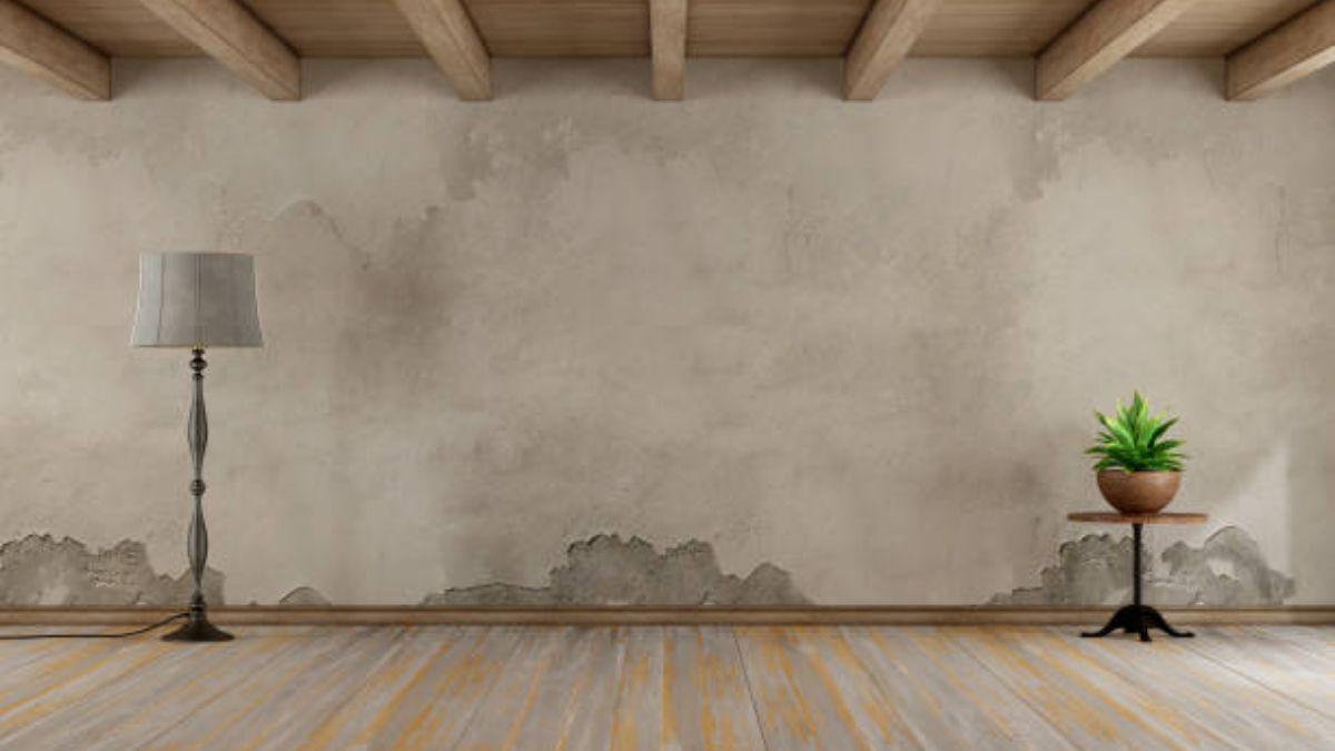 C mo quitar las manchas de humedad - Como limpiar las paredes de casa ...