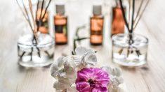 Conoce cómo la aromaterapia es beneficiosa para el embarazo