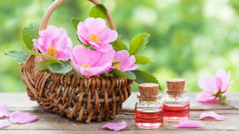 Es un aceite vegetal con grandes propiedades para la medicina convencional y estética.