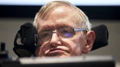 Stephen Hawking. (Foto: AFP)
