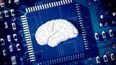 Un microchip en el que poder probar los efectos secundarios de los medicamentos