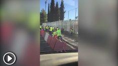 Más de 50 operarios pavimentando una acera de apenas 200 metros en Granada