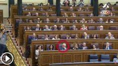 Varios diputados del PSOE no aplauden la intervención de su portavoz en el Congreso