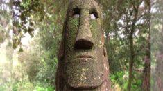 En el bosque de Orrius hay esculturas talladas en piedra de las que nadie sabe quién las esculpió ni con qué motivo…