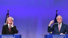 El ministro británico para el Brexit, David Davis y el negociador jefe de la UE, Michel Barnier en Bruselas. (AFP)