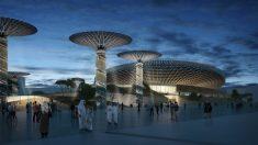 Grimshaw diseñará un pabellón sustentable en la Expo 2020 Dubai