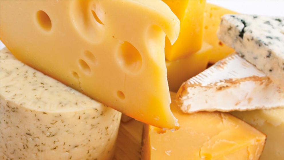 El término 'turófilo' tiene su origen en la unión de las palabras griegas 'Tyros' (queso) y 'Philos' (afinidad).