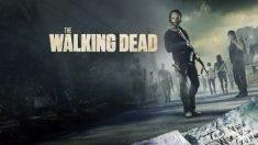 Descubre las novedades sobre 'The Walking Dead'.