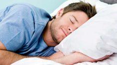 Un gen que controla la capacidad de descanso del cuerpo