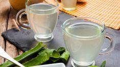Receta de zumo de aloe vera casero fácil de preparar