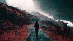Descubre todas las novedades de 'The Rain' la nueva serie apocalíptica que se emitirá en Netflix.