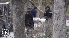 Lugar donde ha fallecido el niño de 4 años en El Retiro por la caída de un árbol. (Foto: Francisco Toledo)