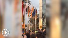 Los independentistas roban la bandera española del Consulado de Alemania.