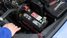 Aprende cómo limpiar la batería del coche y evitar posibles averías.