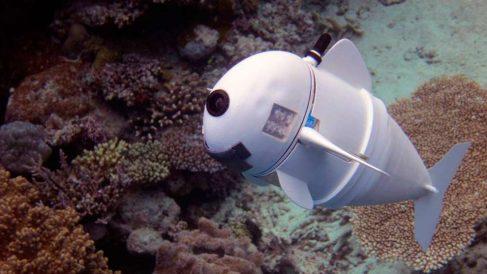 Un nuevo dispositivo para analizar los confines del océano