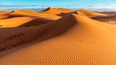Un desierto en constante crecimiento