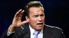 Arnold Schwarzenegger. (Foto: AFP)