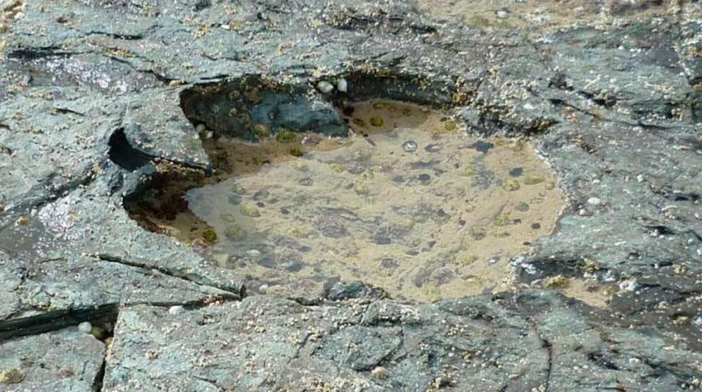 Huellas halladas en Rubha nam Brathairean (Escocia)