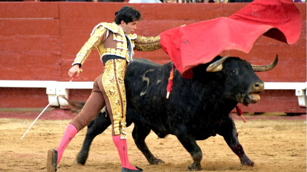 Juan del Álamo en un momento de su faena (Foto: Efe).