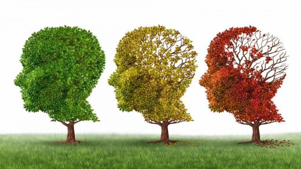 Árboles representando el alzheimer