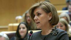 La ministra de Defensa, María Dolores de Cospedal, en la sesión de control del Senado. (EFE)
