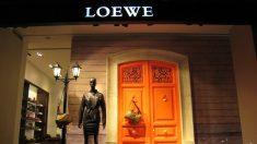 Loewe (Foto. Loewe)