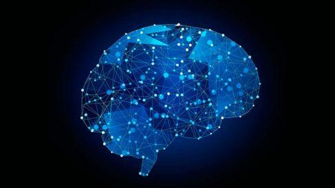 Aprender el funcionamiento de las neuronas es crucial para el entendimiento del cerebro