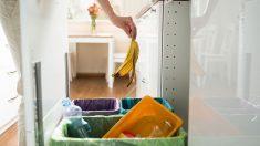 Todos los pasos para saber cómo reciclar correctamente.