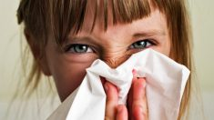¿Por qué han aumentado los casos de alergias?