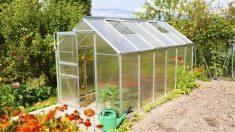 Guía para hacer un invernadero casero