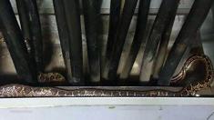 Serpiente capturada en la Feria de Sevilla (Emergencias Sevilla)