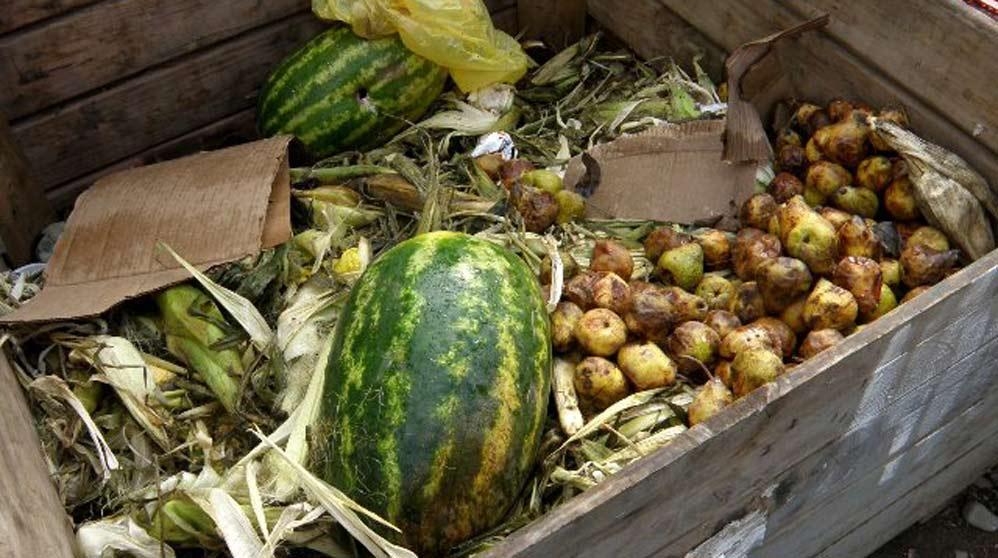 ¿Cuáles son los alimentos más desperdiciados (1)