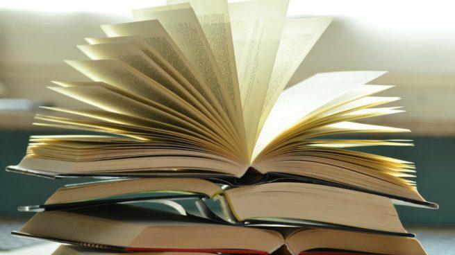 Imagen de archivo de libros.