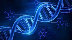 El 25 de abril de 1953 los científicos James D Watson y Francis Crick explican la estructura del ADN.