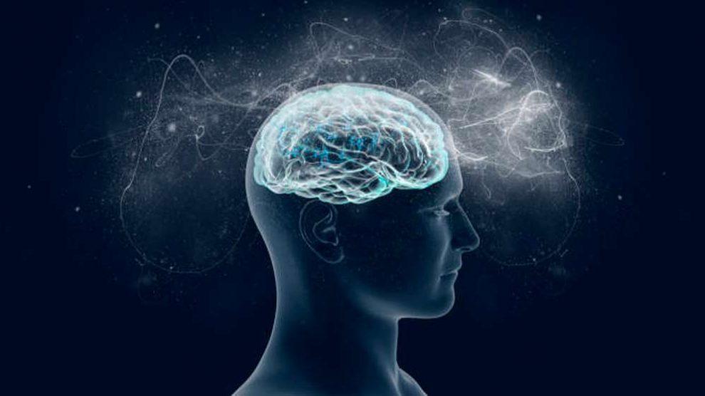 Descubren que el cerebro humano se actualiza ante los imprevistos (2)
