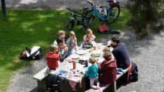 Las claves para disfrutar de un picnic con los hijos