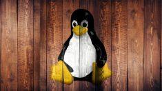 Todos los pasos para instalar Linux en tan solo unos minutos.