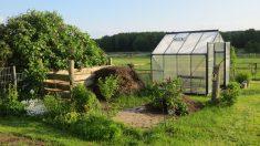 Pasos para hacer un invernadero casero fácilmente y paso a paso