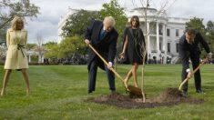Brigitte Macron, Donald Trump, Melania Trumo y Emmanuel Macron durante el acto en el que los dirigentes plantaron un árbol en la Casa Blanca. Foto: AFP