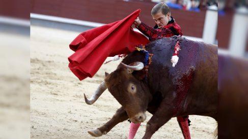 El diestro Javier Cortés, con el quinto de la tarde en la corrida goyesca del 2 de mayo. (EFE)