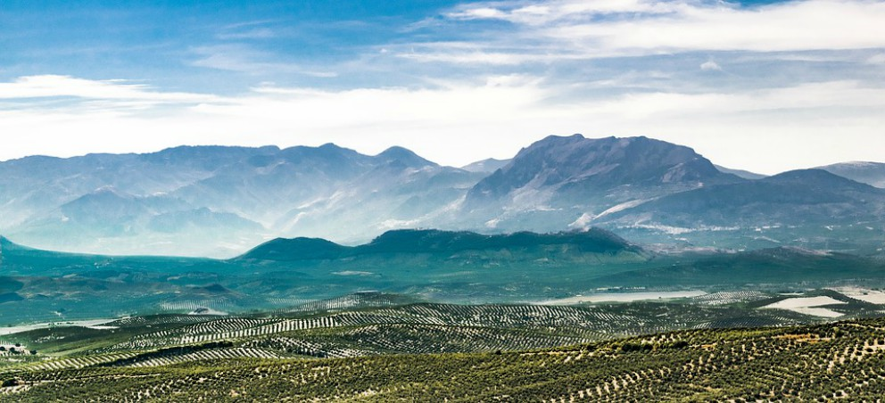 Los famosos «cerros de Úbeda»
