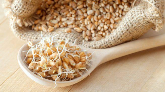 Resultado de imagen para germen de trigo