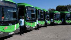 Autobuses interurbanos de la Comunidad de Madrid. (Foto. Comunidad)
