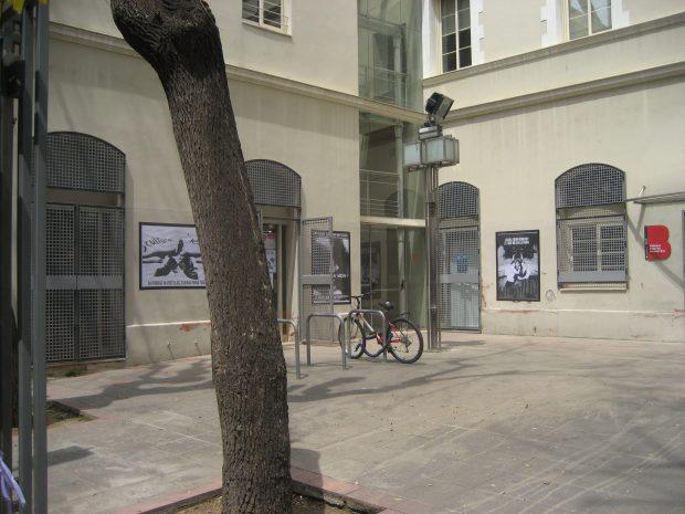La nueva exposición de Colau en las bibliotecas públicas de Barcelona: genitales y sadomasoquismo