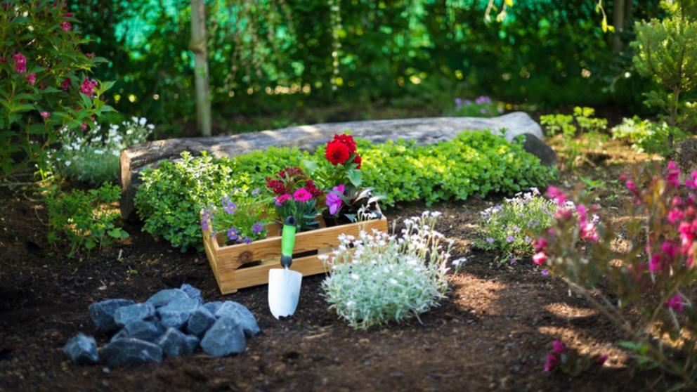 Pasos para construir un jardín en un metro cuadrado paso a paso
